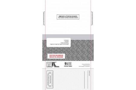Automotive Direct Mail Marketing for Income Tax Return Season